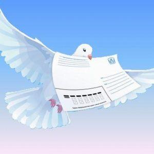 «Куда летит почтовый голубь»